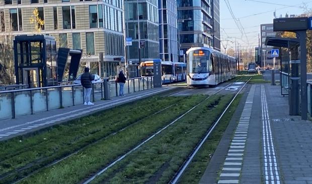 <p>De huidige halte van tramlijn 25 aan de Strawinskylaan.&nbsp;</p>