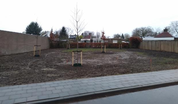 <p>Aan de Provincialeweg, achter de Hoefsmedenhof en Schrijnwerkershof, heeft de gemeente zieke essen gerooid en nieuwe bomen geplant.</p>