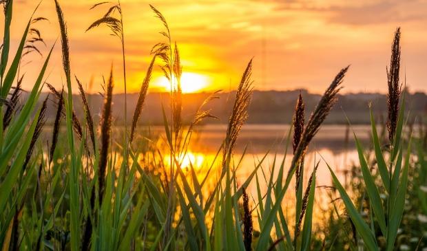 <p>Spaarnwoude Park: een rijk aan natuur, buitenleven en verhalen uit het verleden. </p>