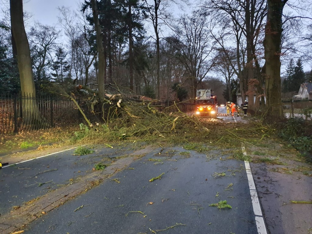 Een omgevallen boom blokkeerde lange tijd de Dorpsstraat in Doorn.  112Heuvelrug  © BDU