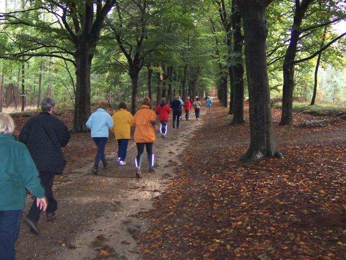 Samen wandelen, gezond en gezellig