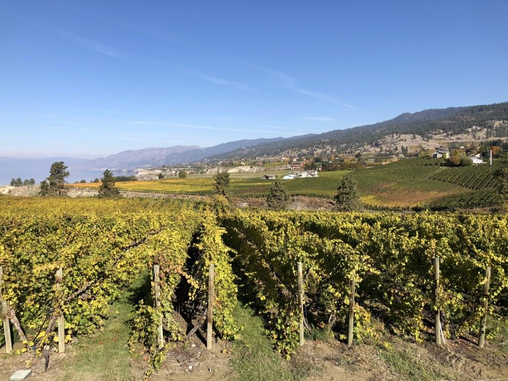 Okanagan Valley: warme zomers, korte lentes, een korte herfst en drie maanden winter. Eigen foto © BDU media