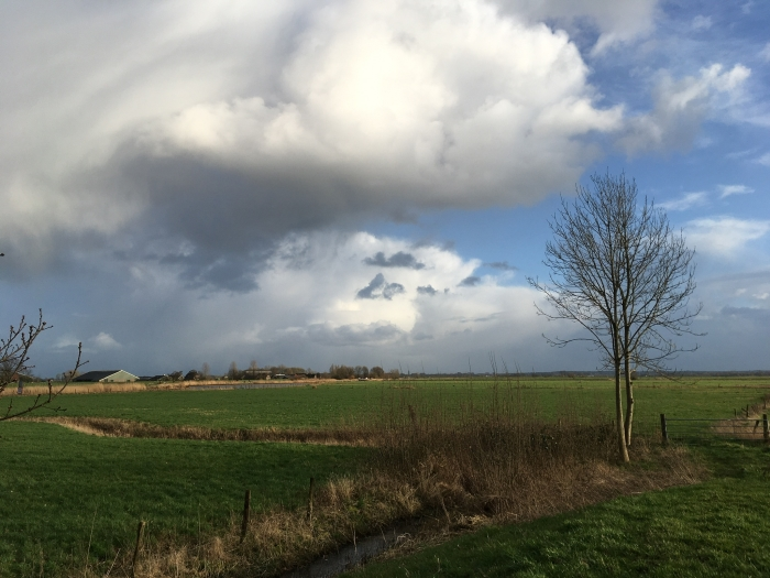Een flinke bui  Willy van Dijk-Doornenbal © BDU media