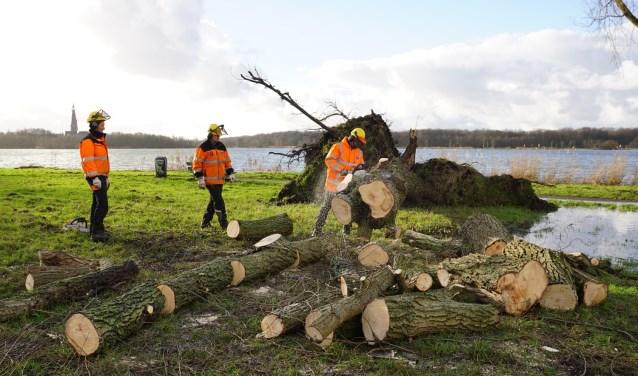 Bomenploeg in actie tijdens eerdere storm.