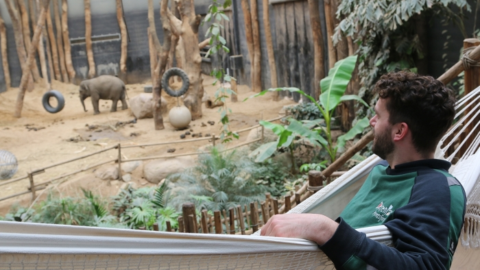 Dierverzorger Rob bij de olifanten Dierenpark Amersfoort © BDU media