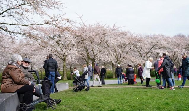 Al eerder kwamen, ondanks de oproep om niet te komen, gewoon mensen naar het Bloesempark in het Amsterdamse Bos.