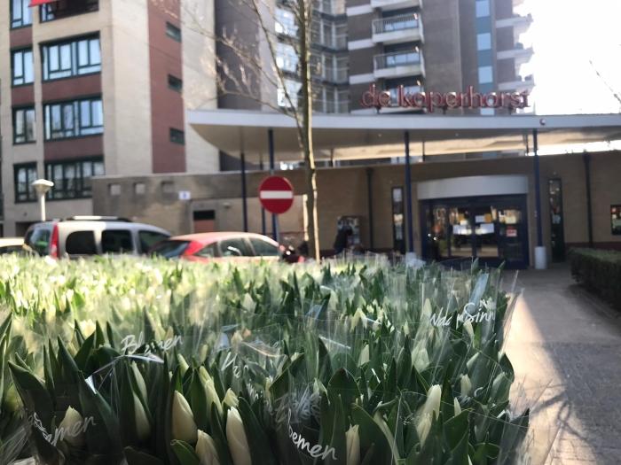 Tulpen voor De Koperhorst Faye Heijnis © BDU media