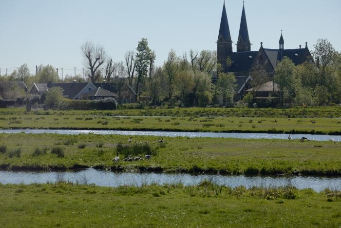 Nieuw leven in de polder Rob Box © BDU media