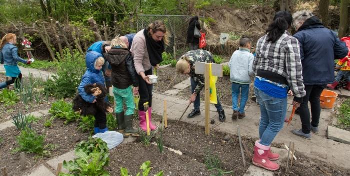 Kinderen zaaien in hun tuintje
