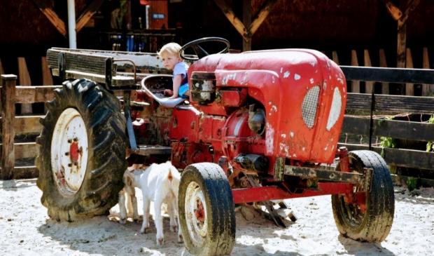 Op de Geitenboerderij mogen kinderen op de trekker, maar ouders  niet.