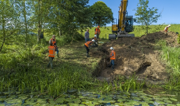 dinsdag 19 mei groef Waterschap Rivierenland in de Waaldijk nabij Dodewaard enkele gangen uit van een bever. Voor ingrepen als deze moet het nieuwe beverprotocol gaan gelden.