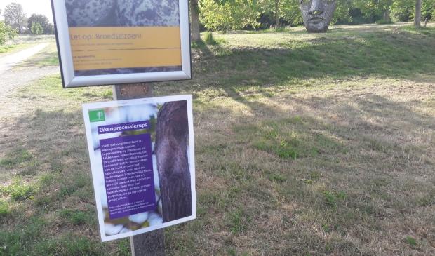 Staatsbosbeheer waarschuwt voor de eikenprocessierups in Nieuw Wulven