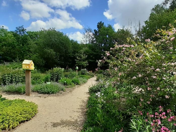 De tuin is nu ook toegankelijk voor mensen die afhankelijk zijn van een rolstoel of rollator.