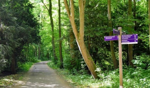 Het Amsterdamse Bos.