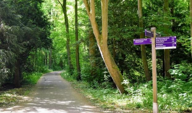<p>Het Amsterdamse Bos.</p>