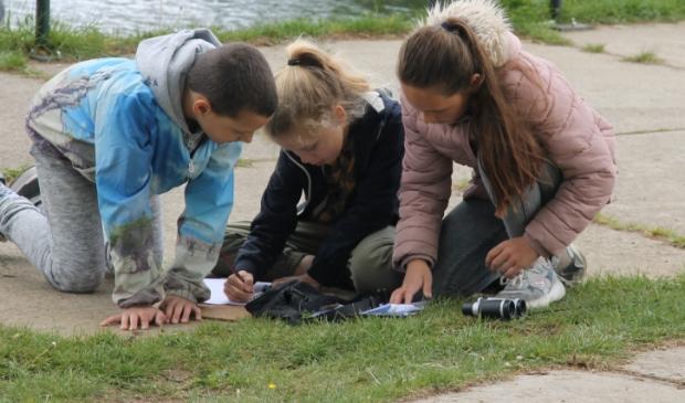 Onderzoek langs de Kromme Rijn