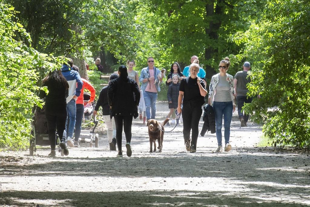 <p>Wandelen in bos Birkhoven in mei dit jaar.</p>