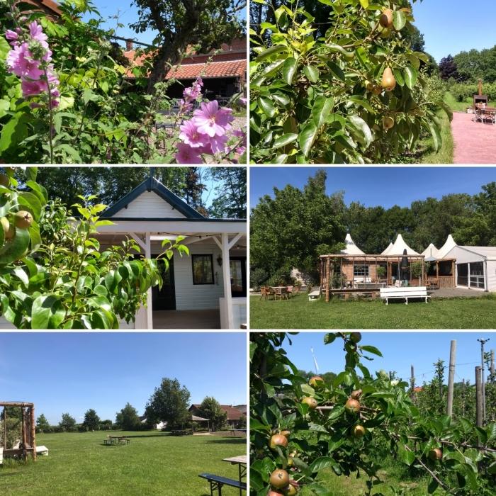 Boomgaarden en Tent met veld