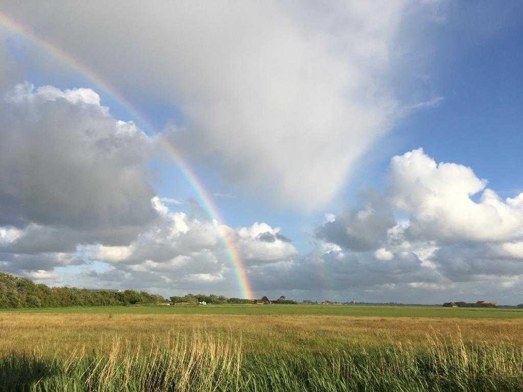 Twee regenbogen, gemaakt bij Den Hoorn op Texel in juni van dit jaar.   Jan Klok © BDU Media