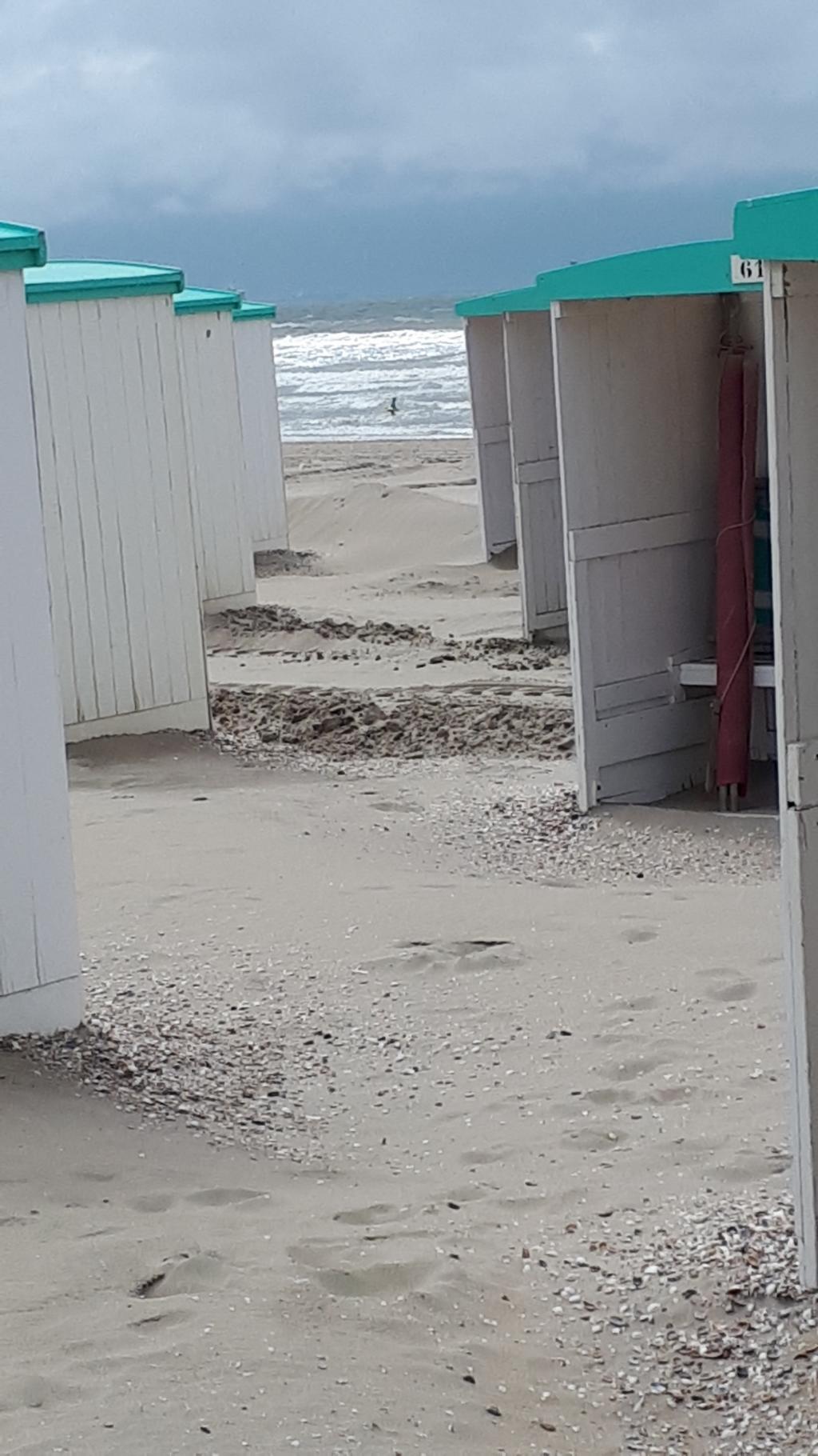 Deze foto is in juni in Zandvoort gemaakt. Ook Nederland heeft zijn mooie plekjes als het weer goed is. Andrea Huijskes © BDU media