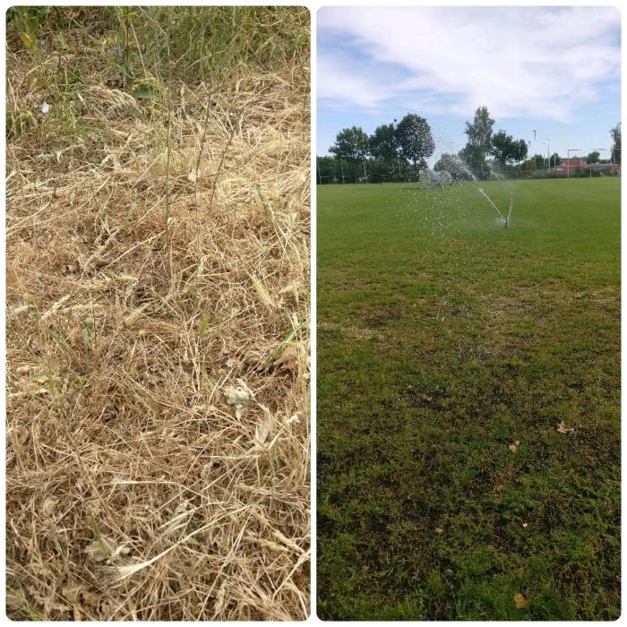 Linkerzijde: gevolgen van de droogte in de natuur / Rechterzijde: de velden van DTS tijdens een continue besproeiing van meer dan 4 dagen