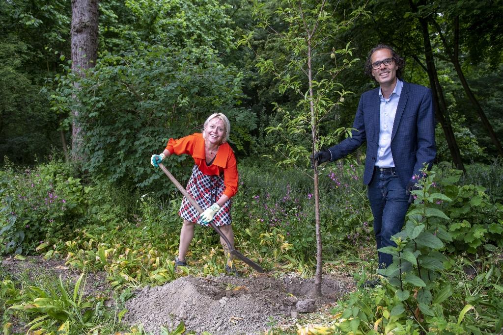 Wethouders Floor Gordon en Laurens Ivens planten een amandelboom bij de presentatie van het Bosplan.