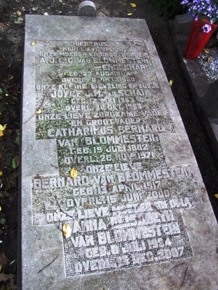 Het familiegraf op de Algemene begraafplaats aan de Herfstlaan te Heemstede.