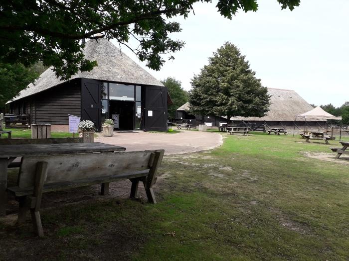 Volop zomeractiviteiten bij de schaapskooi in Ermelo