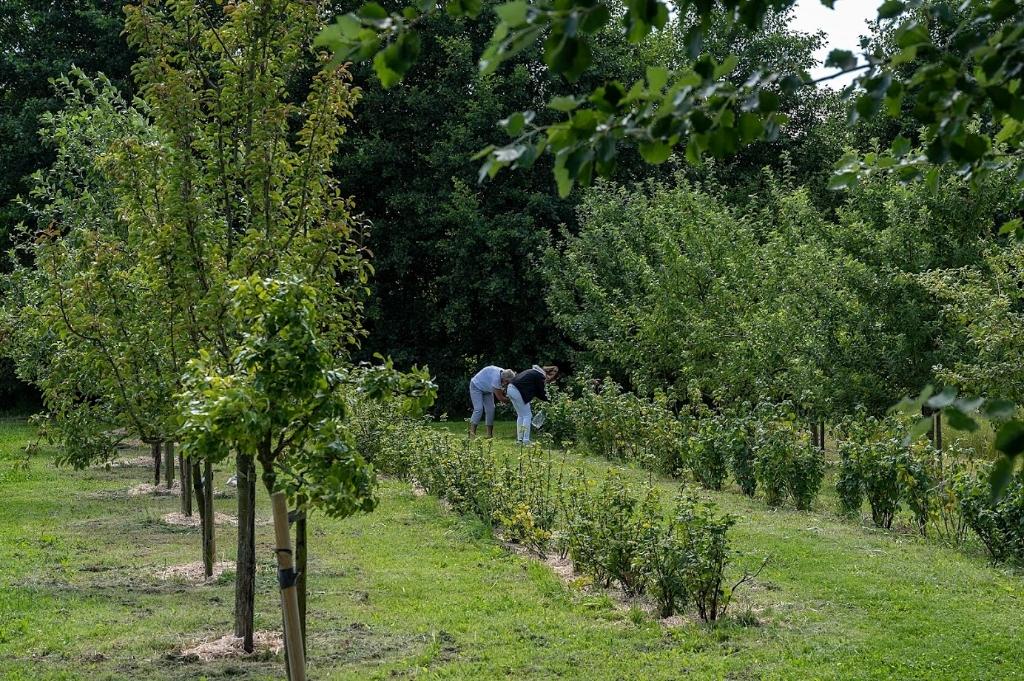 Groenliefhebbers aan het werk in een van de tuinen.  Kees van der Veer © BDU media