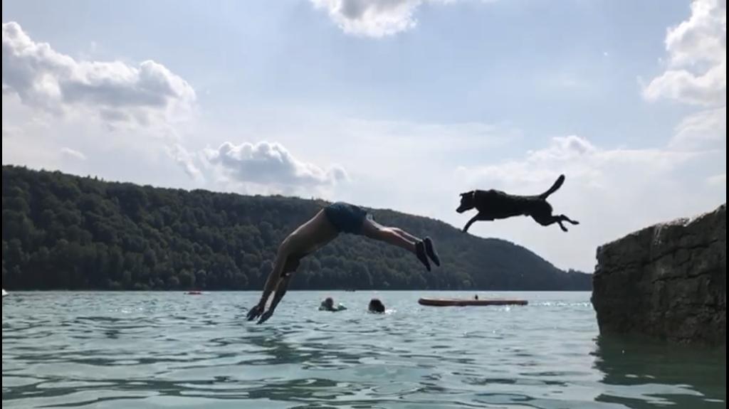 Vakantie in Frankrijk, heerlijk bij een meer. Onze hond bleek een echte waterrat; waar de baas gaat, gaat hij. Een heerlijke duik vanaf een rots gaat hij niet uit de weg. Jeroen van den Akker © BDU media
