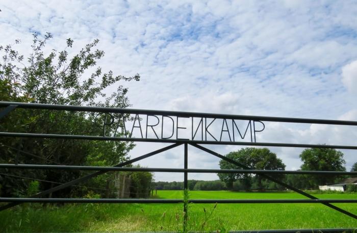 Langs het Paardenkamp naar de Stuifduinen Onno Wijchers © BDU media