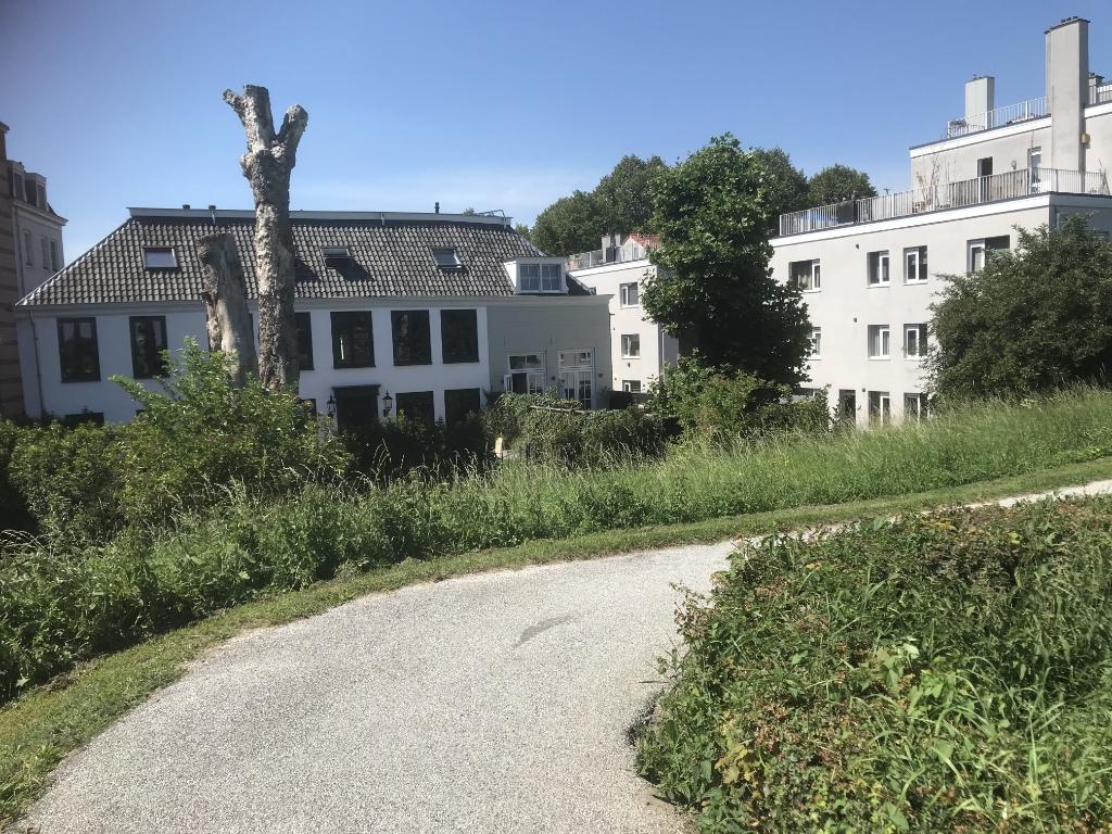 De bomen van wijlen Hans de Bie aan de Altenawal Hannie Visser-Kieboom © BDU Media