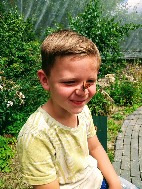 """,,Onze kleinzoon Yanick met een vlinder op zijn neus! Hoe leuk is dat! Juli 2020 Passieflora hoeve Harskamp."""" Martha van Lagen © BDU Media"""