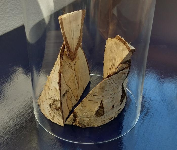 beelden hout