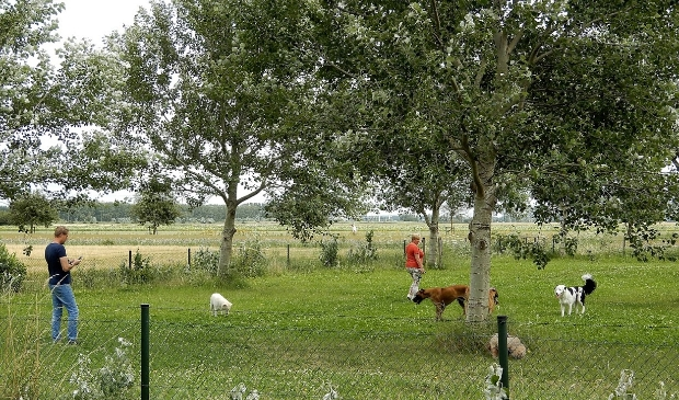 <p>Plezier voor honden in de Plesmanhoek.</p>