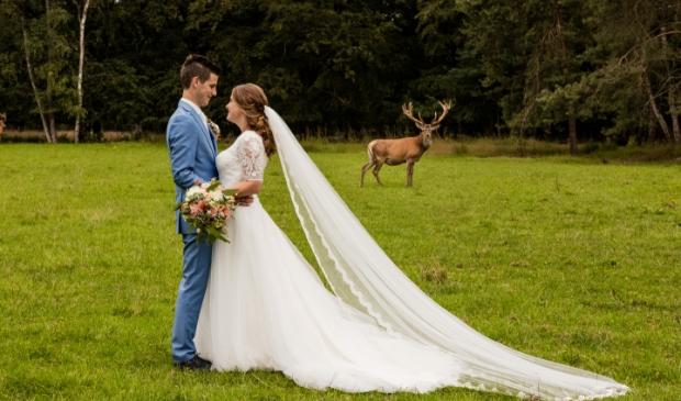 Edelhert Hubertus op één van de trouwfoto's.