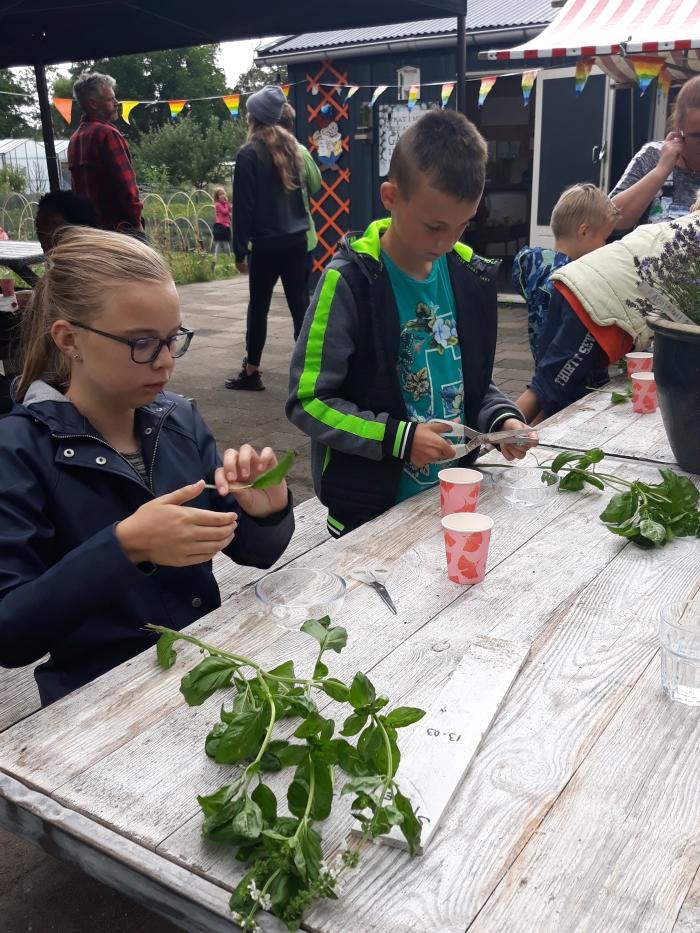 Kinderen maken met Juf Linda hun eigen bakje kruidenboter Carin Molenaar © BDU media