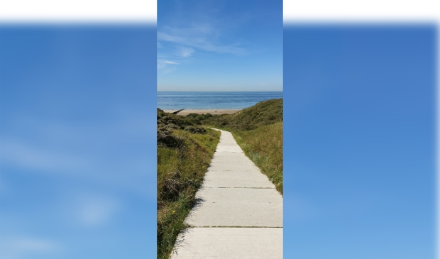 Deze foto is gemaakt in de duinen van Zoutelande. In juli 2020. Rit van Dijk © BDU Media