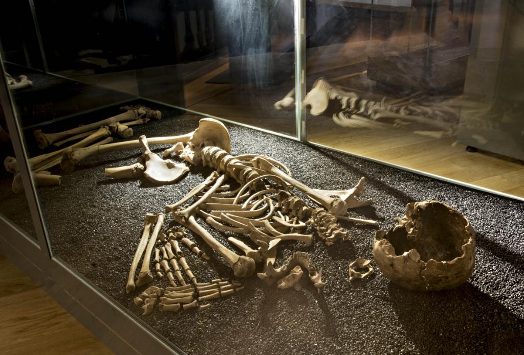 Historisch Collectief Molenlanden © BDU media