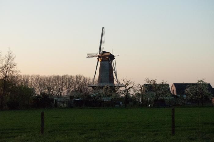 molen Rijn& Weert in Werkhoven