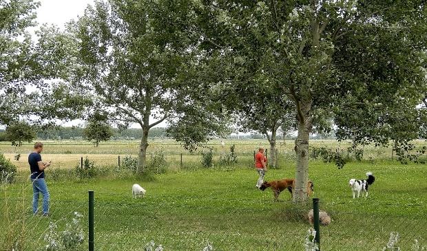 <p>Een van de honden-losloopgebieden in Haarlemmermeer.&nbsp;</p>
