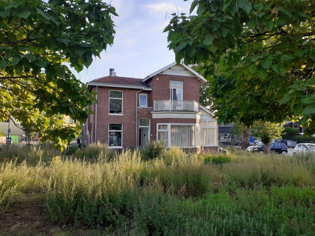 <p>Villa Burbank vanaf de Schoudermantel gezien, met de twee catalpa&#39;s op de voorgrond.</p> Agnes Corbeij © BDU media