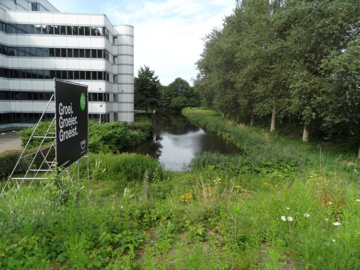 Groen ..., Entrada, Kwelsloot, Bomentalud