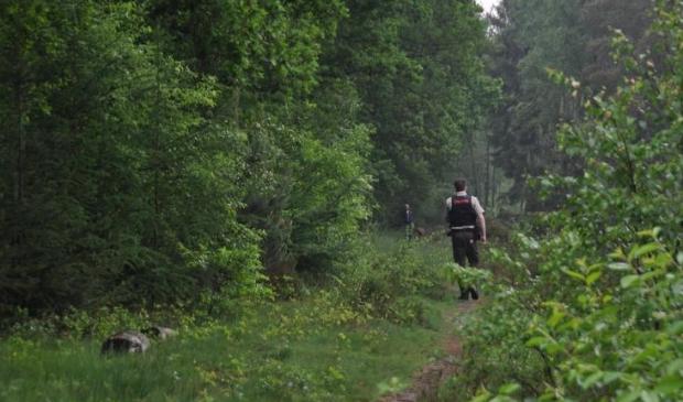 Toezichthouder in het bos