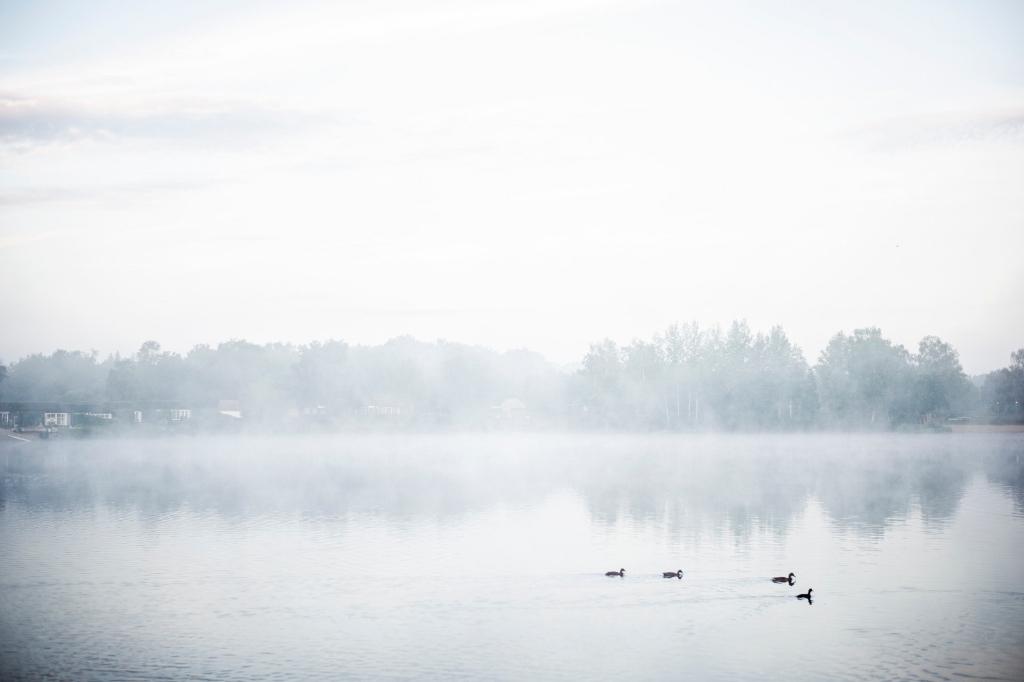""",,De foto is gemaakt op vakantiepark De Tolplas in Hoge Hexel, gemeente Wierden. Op de foto is mijn uitzicht over het water te zien na een zomerse stortbui. Het water was in vergelijking met de regen zo warm, dat er stoom vanaf kwam en er een sprookjesachtige sfeer ontstond in de vroege ochtend."""" Dominique van Ojik © BDU Media"""