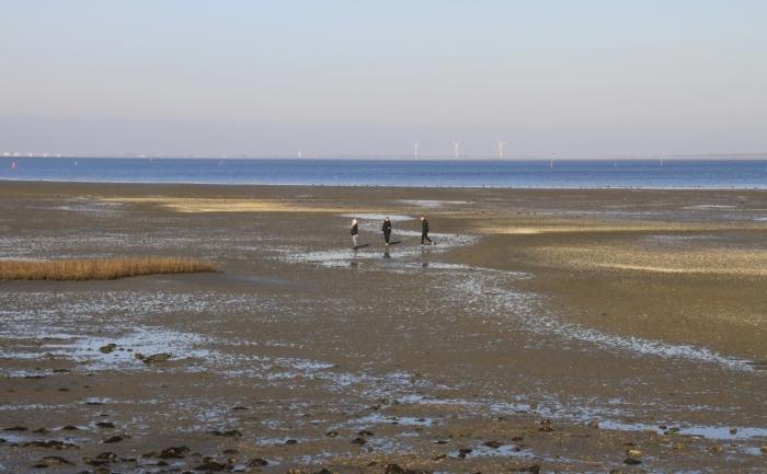 strand met wandelaars( inclusief Brigit van den Hondel)