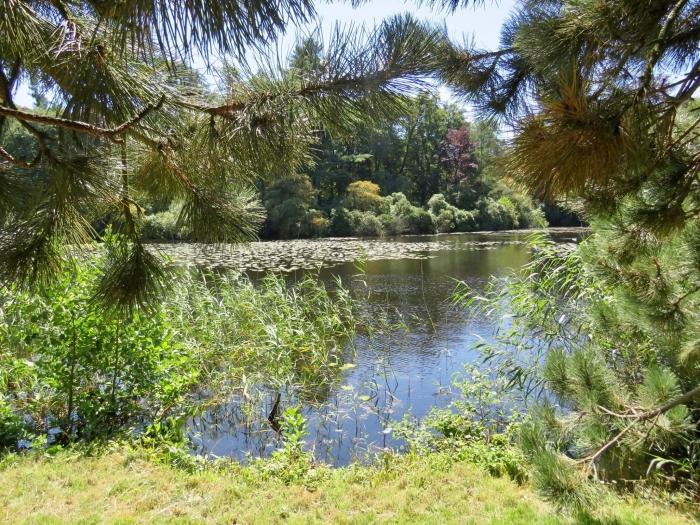 Doorkijk naar de Park-vijvers Onno Wijchers © BDU media