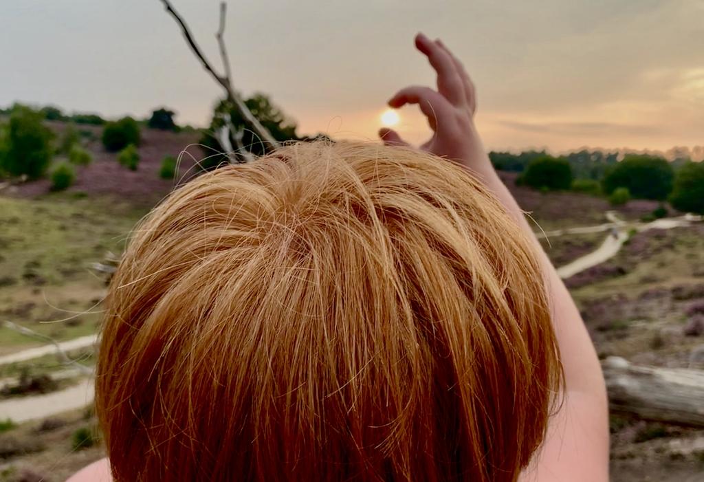 """De foto is gemaakt op zaterdag 15 augustus op de Posbank. ,, Ons zoontje Siebe wil de zon proberen te pakken tijdens onze avondwandeling waarbij we hebben genoten van de hei die zo prachtig in bloei staat!"""" Anita van der Pol © BDU Media"""