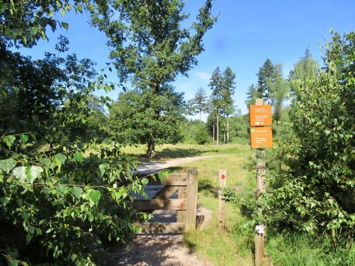 Het Begrazingsgebied (de Heide) Onno Wijchers © BDU media