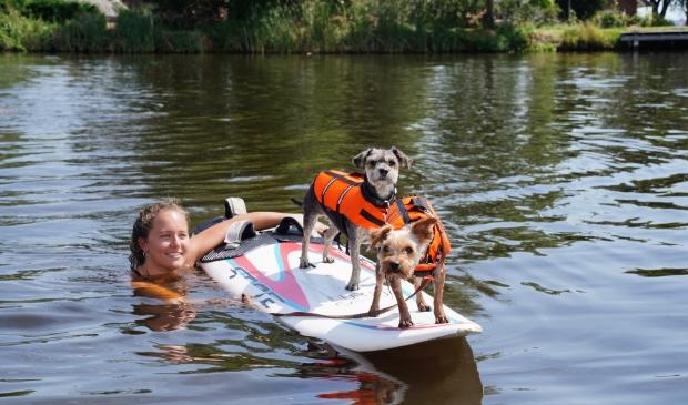 Suppen is niet alleen populair bij mensen, zo blijkt aan de Amstel. Deze honden weten prima hun balans te bewaren.